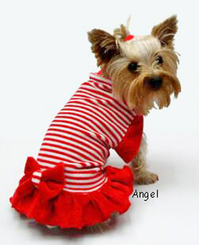 Candy stripe dog clothes