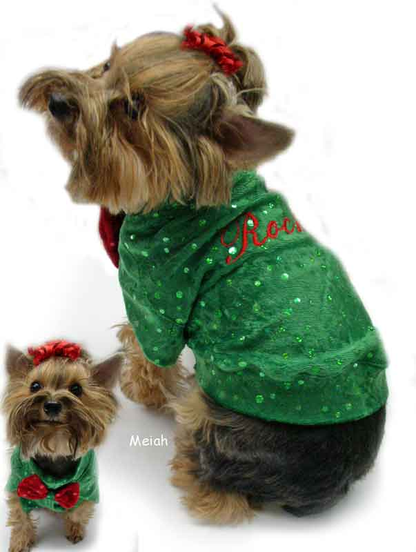 Green Sparkle Panne dog clothes