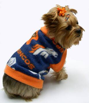 san francisco 36dd8 0df1b Denver Broncos dog clothes